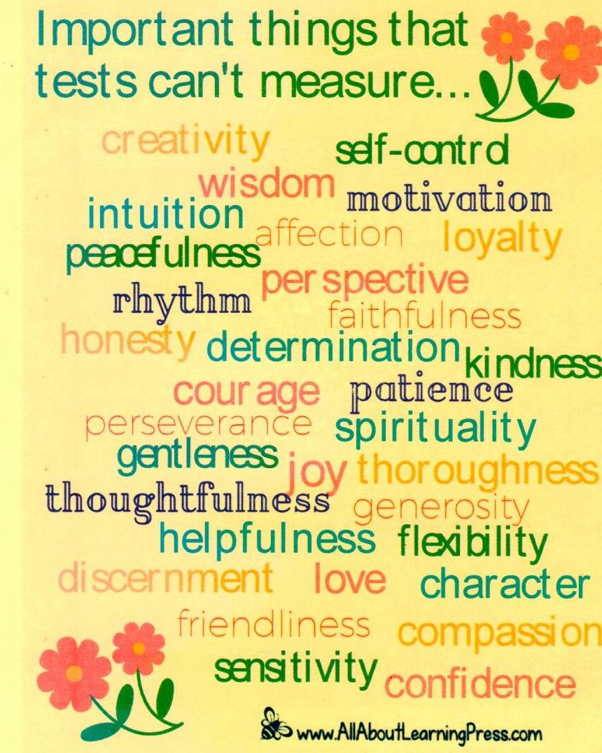 Important Things Tests Can't Measure
